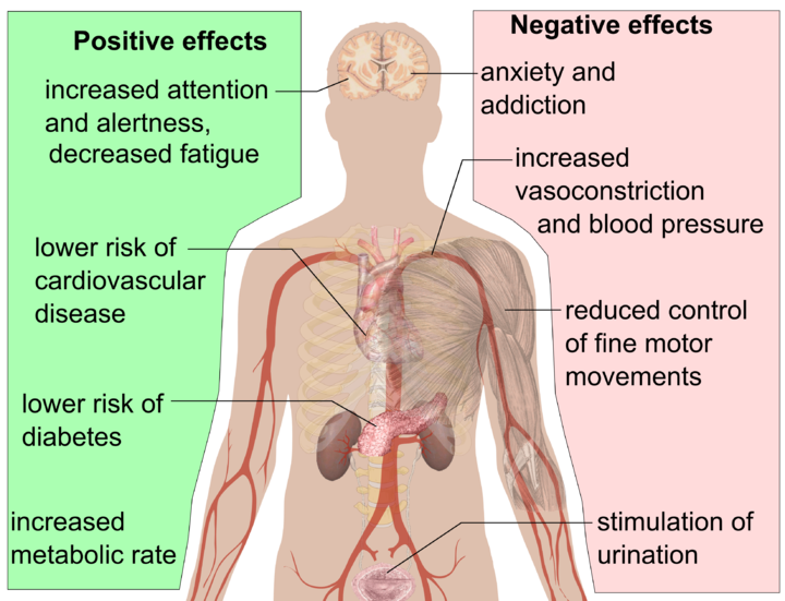 Health effects of caffine & coffee